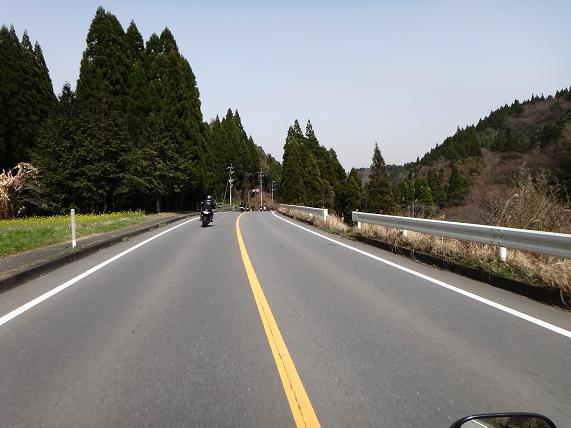12 福岡市内より花粉は飛んでないらしい.JPG