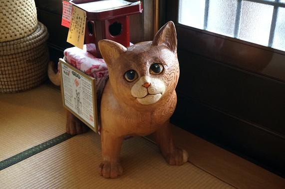 13 めっちゃ目が合う猫.JPG