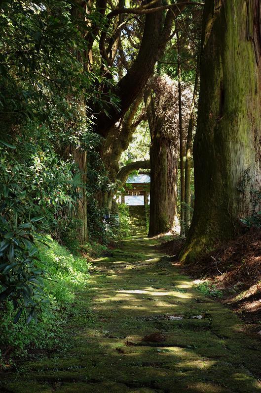 14 石畳は苔で良い雰囲気です.JPG