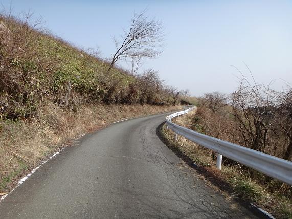 17 わたくし好みの道.JPG