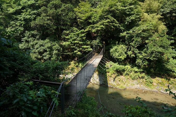 17 ボヨンボヨン揺れる橋.JPG