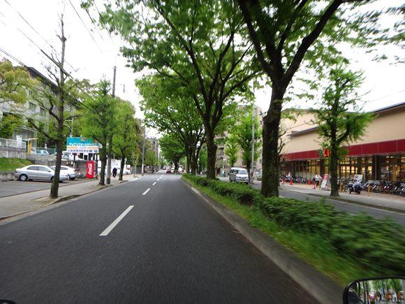 17 京都の市街地へ.JPG