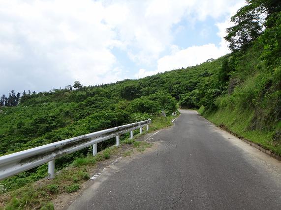 17 大規模林道は最高.JPG