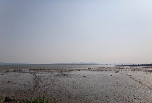 18 干潟ガタガタ.JPG