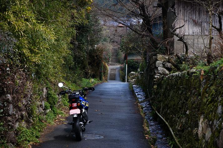 1 秋月の路地.JPG