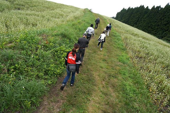 20 ソバ畑散歩.JPG