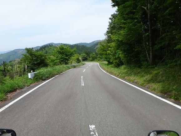 20 大規模林道.JPG