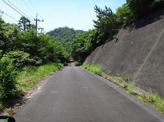 20 走りやすい林道です.JPG