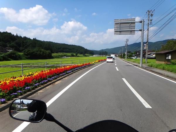 21 沿線は花でいっぱい.jpg