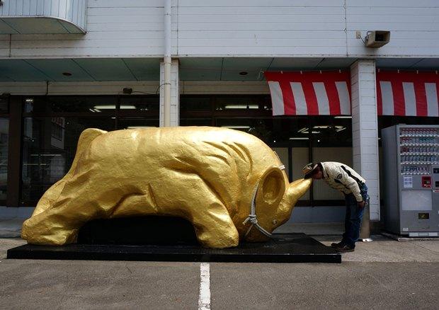 25 宇和島の闘牛で金運UP.JPG