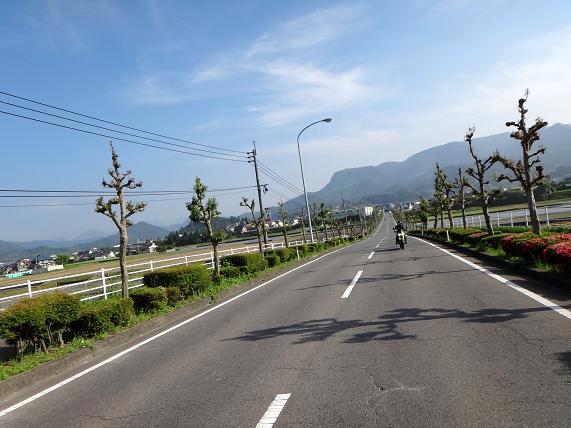 29 後ろの山は伐株山.JPG