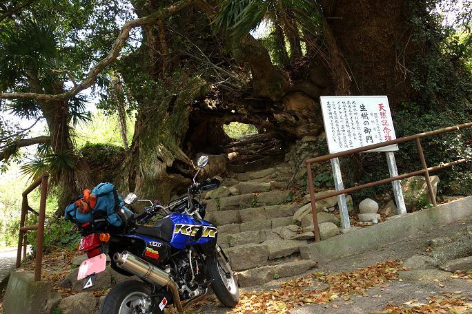 31 生樹の御門です.JPG