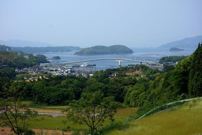 38 大きな漁港がありました.JPG