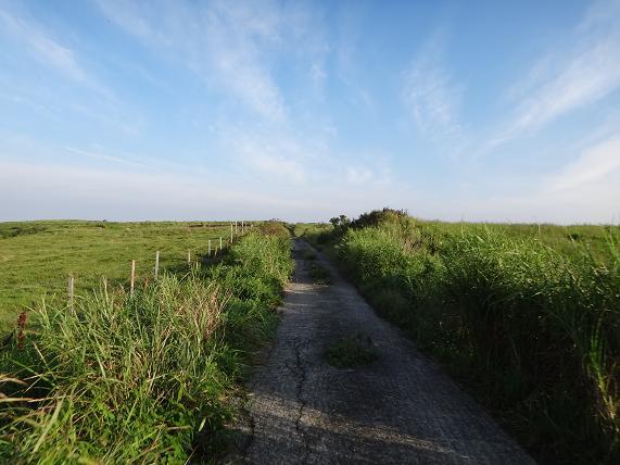 3 大草原へ.JPG