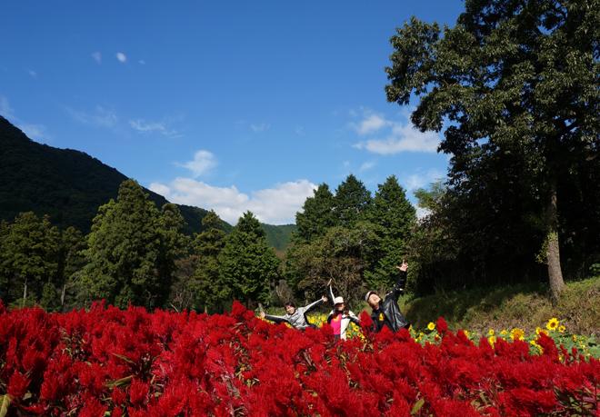 3 花畑で一発目の集合.jpg