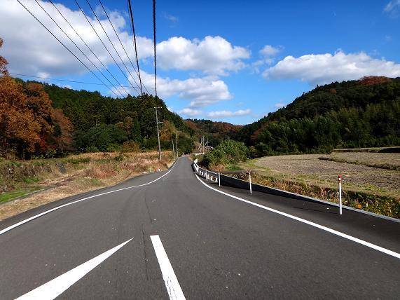 4 田舎の道はすぐに狭くなる.JPG