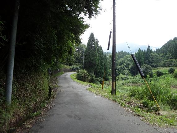 6 山道へ.JPG