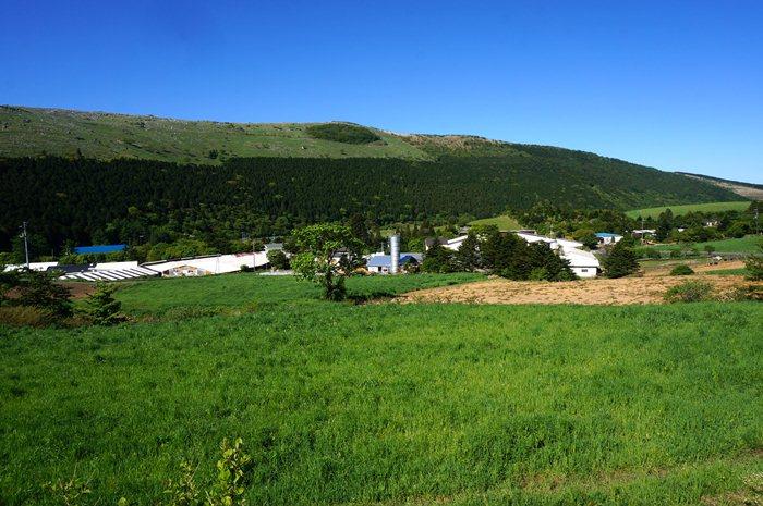 6 牧場があります.JPG