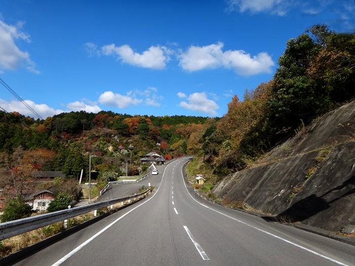 6 道のりだけで紅葉はおなかいっぱい.JPG
