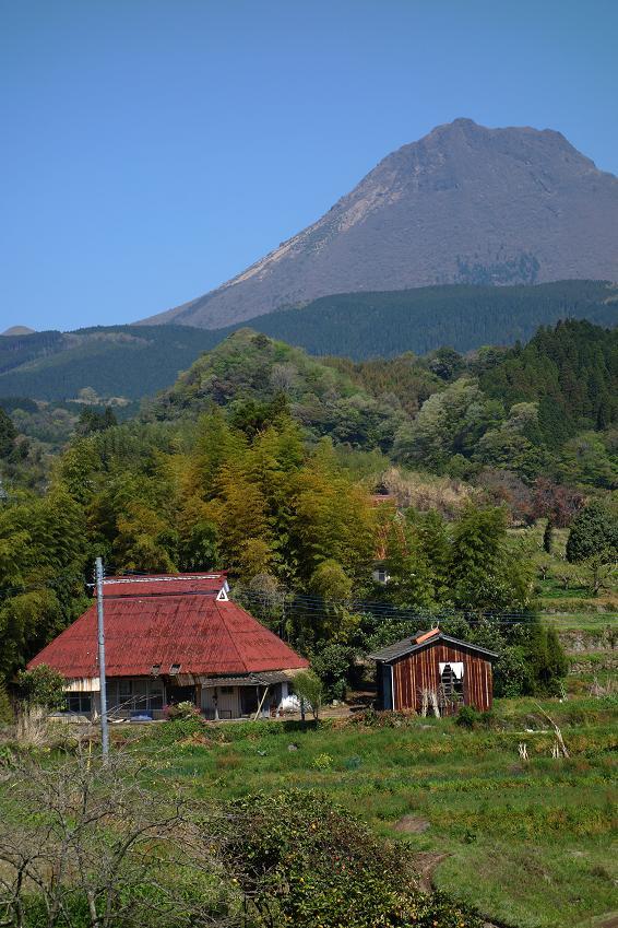 7 由布岳が見える素敵な村.JPG