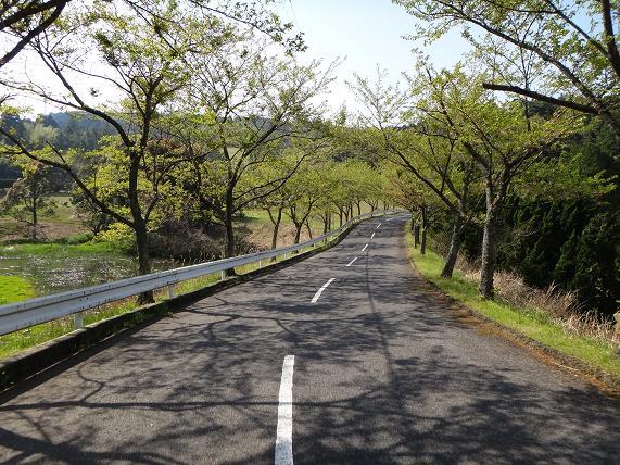 8 桜の時期に来てみよう.JPG