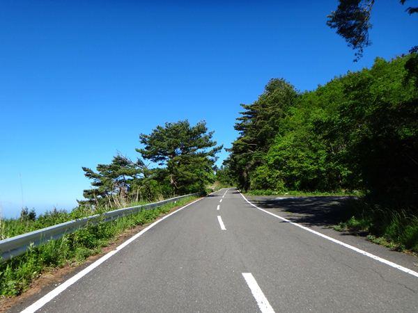 9 カルストまでの林道.JPG