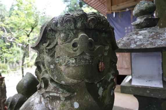 9 本殿側の狛犬.JPG