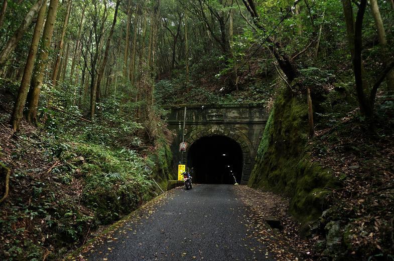 プチじゃない気持ちにさせてくれるトンネル.JPG