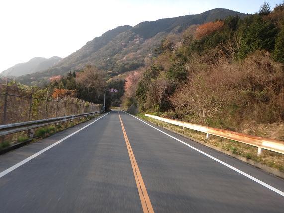 大坂山の峠.JPG