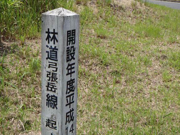 林道でお散歩.JPG