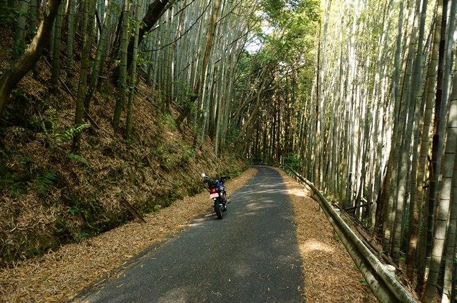 林道を選んでしまうバイクです.JPG