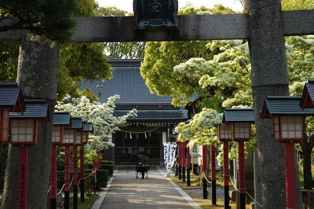 湊岡神社.JPG