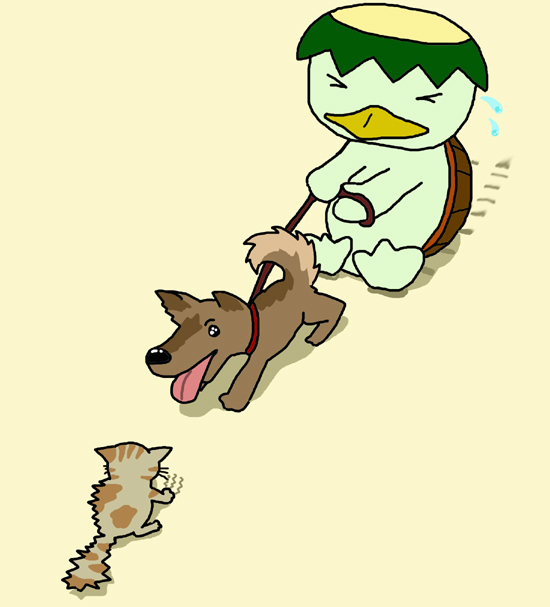 犬の散歩.jpg