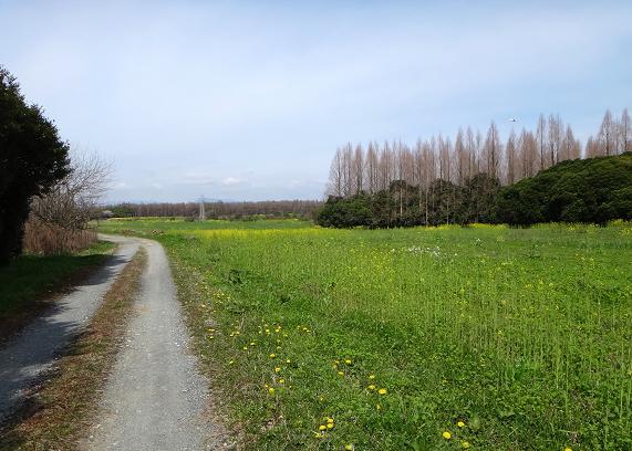築城の小道.JPG