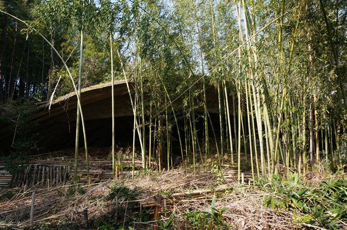 関西地方初の掩体壕です.JPG