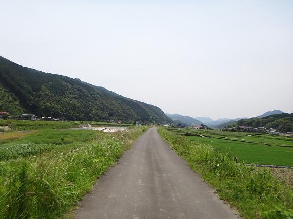 1 英彦山川の土手.JPG