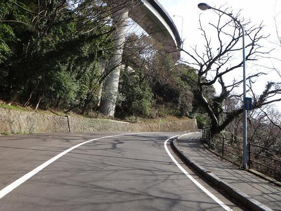 11 めかり公園へ.JPG