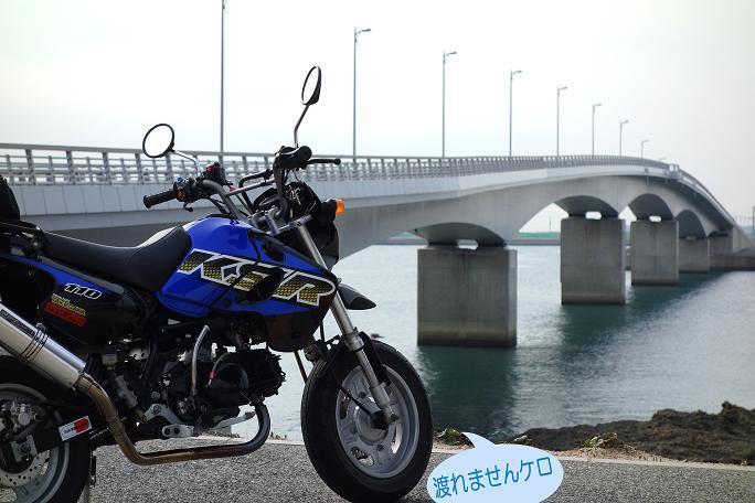 28 渡って見たかった橋.JPG