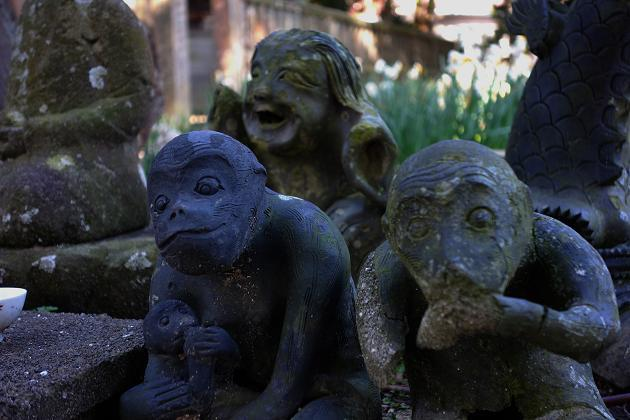 4 小猿がおる.JPG