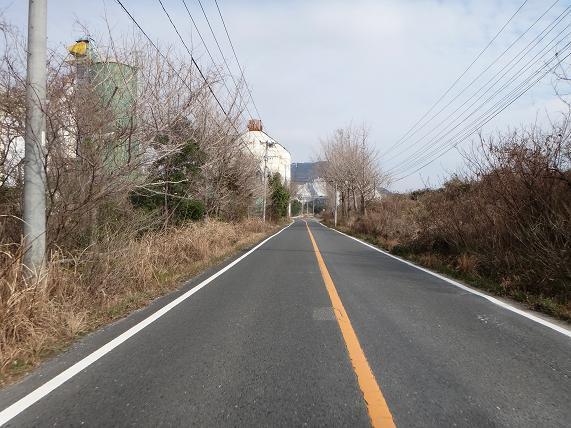 8 セメントの道.JPG
