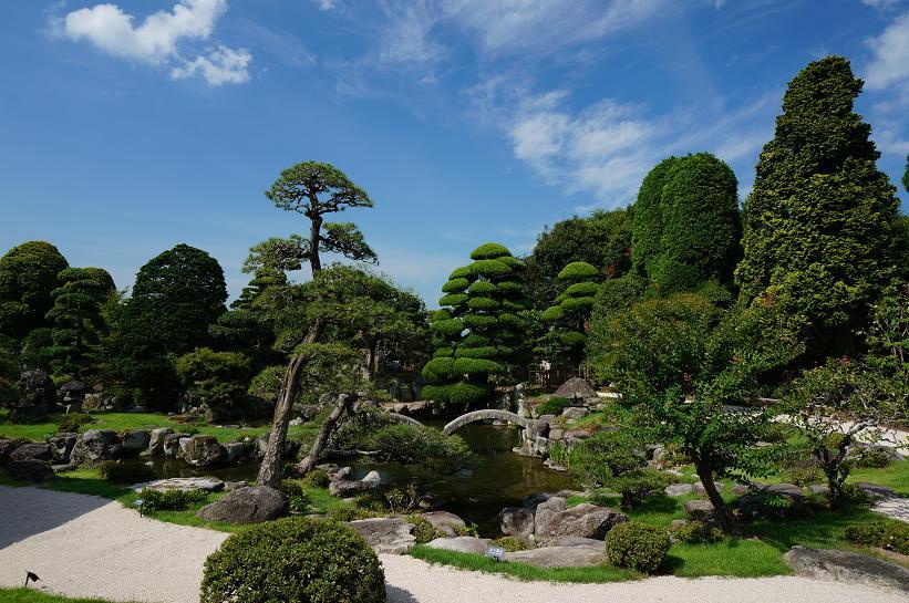 我が家並みの庭園.JPG
